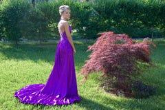 Prom Royalty-vrije Stock Foto's