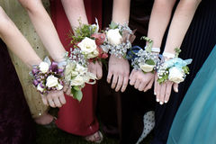 Prom Corsages Girls Beautiful Dresses Royalty Free Stock Photos