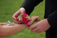 Prom date slides on wrist corsage. Young man gives wrist corsage to prom date royalty free stock image