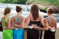 Prom Elegance Stock Image