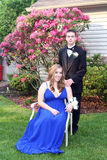 Prom Girl Sitting Beside Date Outdoors. Prom couple portrait taken in an outdoor setting, girl is sitting and boy is standing beside her Royalty Free Stock Image