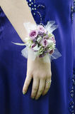 Prom girl. Teen girl wearing wrist corsage on prom night Stock Photography