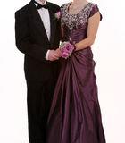Prom or Wedding Royalty Free Stock Image