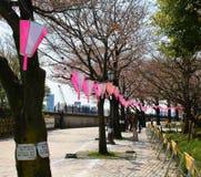 Promanade en Tokio Fotos de archivo