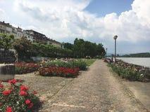 Promenad Mainz royaltyfria bilder
