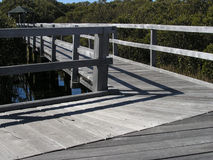 promenada mangrowe Zdjęcia Stock