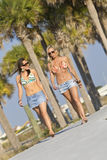Promenade à la plage Photos stock
