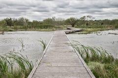 Promenade über dem See im Park lizenzfreies stockbild