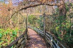 Promenade über dem Sumpf, Florida Stockfotos