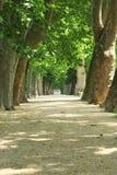 'promenade'. Imágenes de archivo libres de regalías