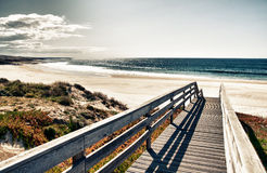 Promenade aan strand Royalty-vrije Stock Afbeelding