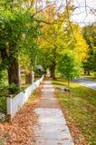 Promenade abandonnée couverte de piles des feuilles tombées sur Sunny Autumn Day Image stock