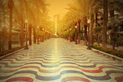 Promenade in Alicante at sunset Royalty Free Stock Images