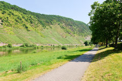 Promenade along Moselle river Royalty Free Stock Image