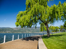 Promenade along the Okanagan Lake waterfront in Kelowna, BC royalty free stock photo
