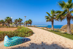 Promenade along shoreline in Ashqelon, Israel. Paved promenade with palms and plants along shoreline of Mediterranean sea in Israel Royalty Free Stock Image