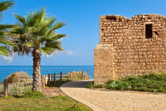 Promenade and ancient tomb in Ashkelon, Israel. Promenade along coast of Mediterranean sea with palms and ancient tomb of unknown shah in Ashkelon, Israel Royalty Free Stock Photos