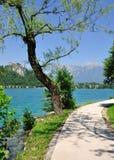 Promenade,Lake Bled,Slovenia Stock Images
