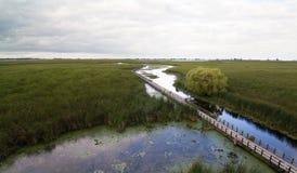 Promenade au-dessus de marais images libres de droits