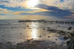 Promenade au-dessus des stromatolites à la piscine de Hamelin, Australie occidentale image stock