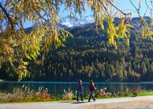 Promenade auf dem Schweizer See stockfoto
