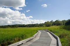 Promenade auf grünem Feld Lizenzfreies Stockfoto