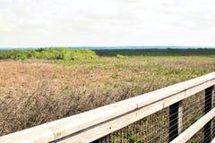 Promenade auf Grasland-Nationalpark US 441 Paynes Lizenzfreies Stockbild