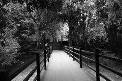 Promenade avec Photos stock