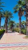Promenade avec des palmiers Images libres de droits