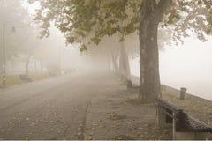 Promenade Belgrade. Street lamp and forest park in fog Stock Photos