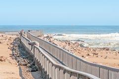 Promenade bij Kaapkruis Royalty-vrije Stock Foto