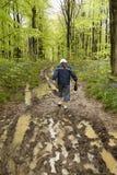 Promenade boueuse de source Images libres de droits