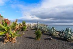 Promenade côtière avec des plantes tropicales dans le Blanca de Playa Images stock