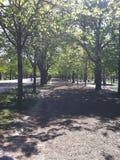Promenade Calmy image stock