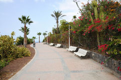 Promenade in Costa Adeje, Tenerife Royalty Free Stock Photography