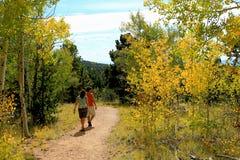 Promenade d'Aspen Image libre de droits