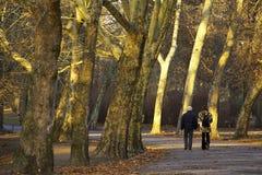 Promenade d'automne Image libre de droits