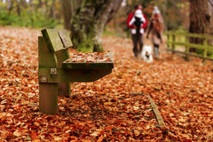Promenade d'automne Photo libre de droits