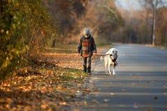 Promenade d'automne avec l'animal familier Image stock