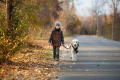 Promenade d'automne avec l'animal familier Photographie stock