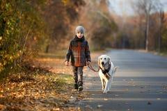 Promenade d'automne avec l'animal familier Photos stock