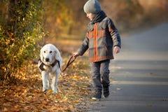Promenade d'automne avec l'animal familier Photo stock