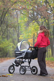 Promenade d'automne avec la chéri Photo stock
