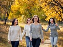 Promenade d'automne en parc Photographie stock libre de droits