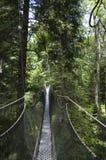 Promenade d'auvent de jardin botanique d'UBC Images stock