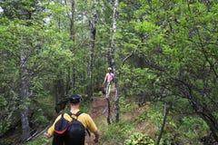 Promenade d'enfant et de papa dans la forêt Image stock