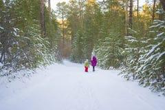 Promenade d'enfants dans une forêt féerique d'hiver Image stock