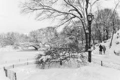Promenade d'hiver en parc Photo stock