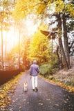 Promenade d'homme avec le chien sur la rue d'automne Photographie stock libre de droits