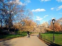 Promenade dans Central Park Photo libre de droits